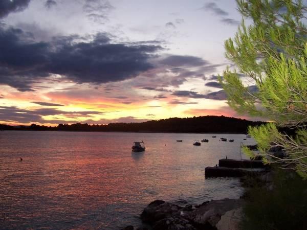 Otok Pašman